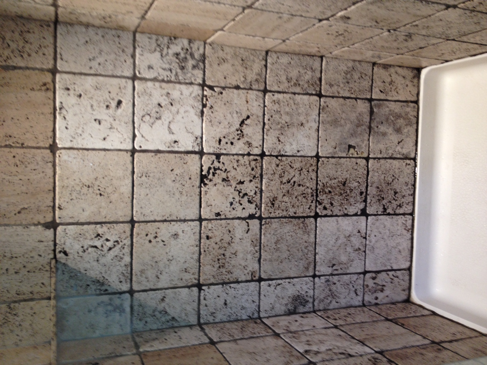 how to clean shower grout mold